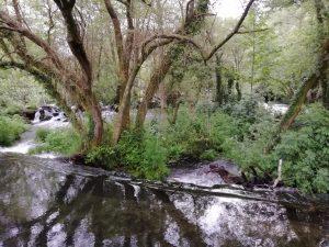 Caminho Portugues Tag 6 - kleine Staustufe im Fluss