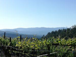 Caminho Portugues Tag 10 - Blick über das Gebirge